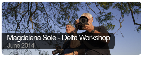 Magdalena Sole - Delta Workshop - June 2014 - Trips