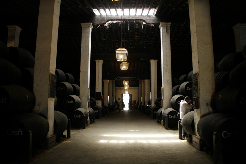 Andalucia wineyard